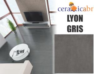 lyon-gris