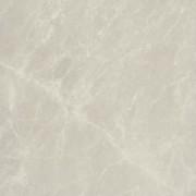 pp-spider-white
